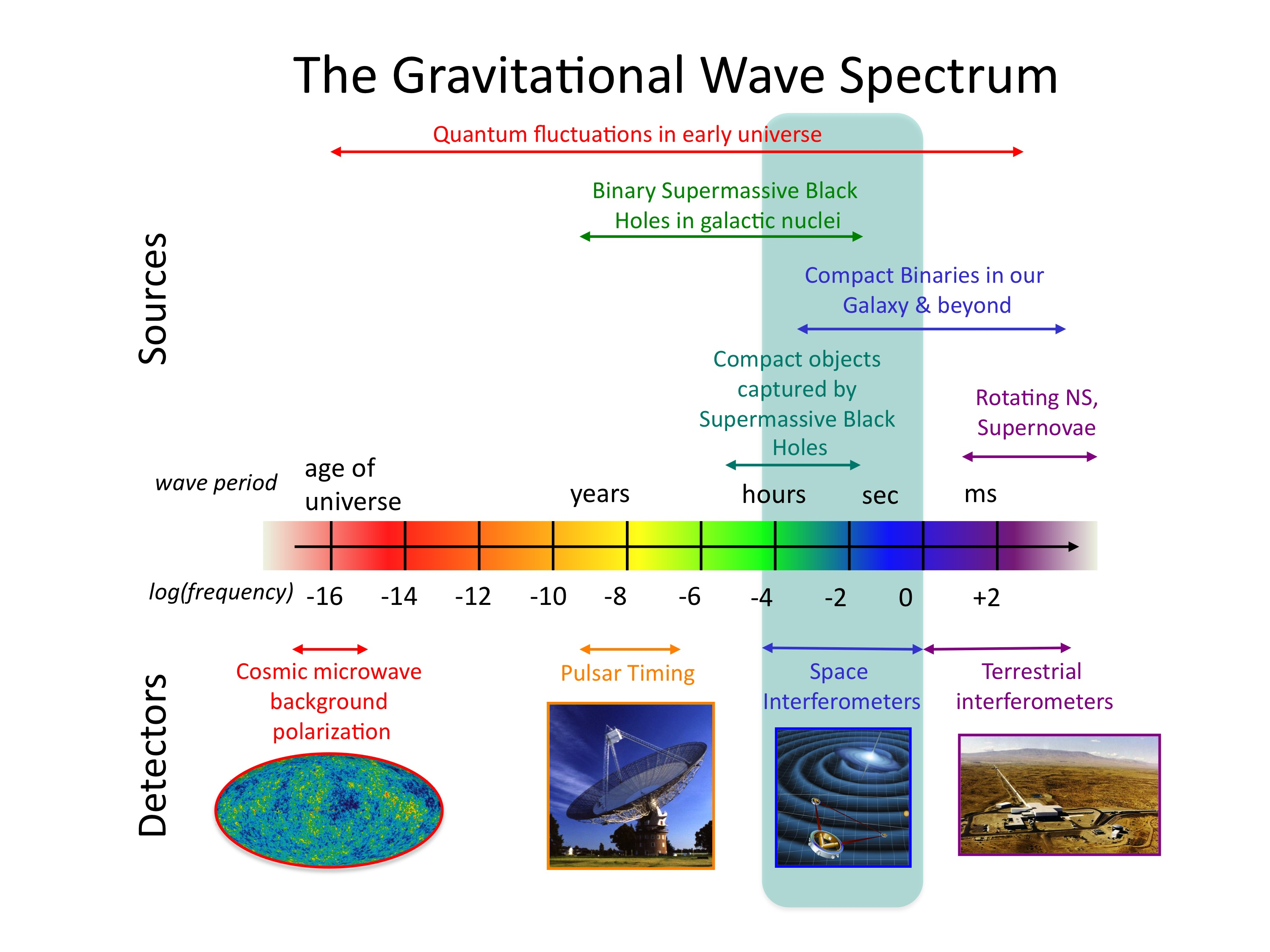 Gravitational Wave Sensitivity Curves Christopher Berry