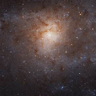 The Triangulum galaxy, also known as Messier 33 or M33, as imaged by the Hubble Space Telescope