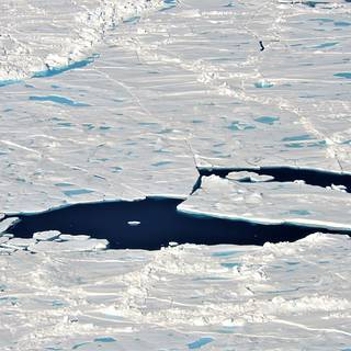 Photo of a collection of broken up sea ice floes of various sizes, floating north of Greenland. Melt ponds are visible on the ice surface.