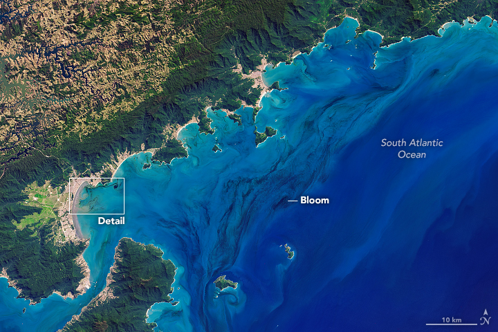 Landsat 8 image of waters off the coast of Brazilian state of São Paulo.