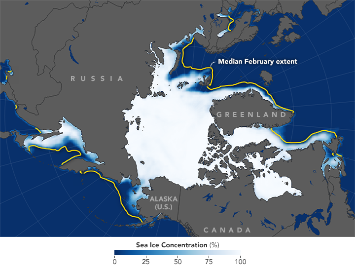 Map of sea ice concentration in Arctic during February 2018