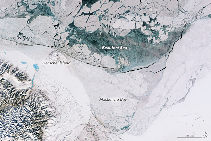 Landsat 8 natural-color image of Beaufort Sea, north of Canada