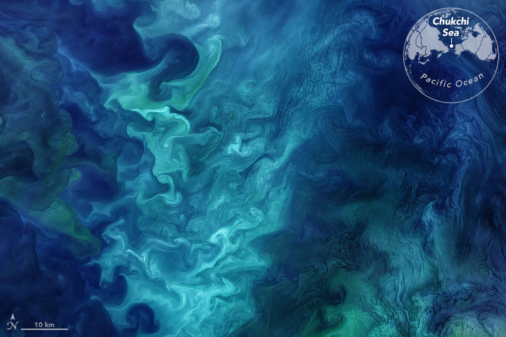 Landsat 8 visible image of phytoplakton blooms in the Chukchi Sea