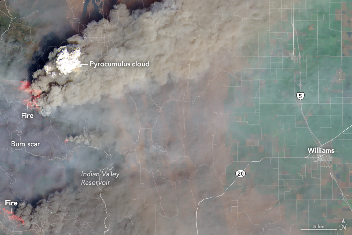 Landsat 8 satellite image of a dense column of smoke topped by a pyrocumulus cloud over the Ranch fire