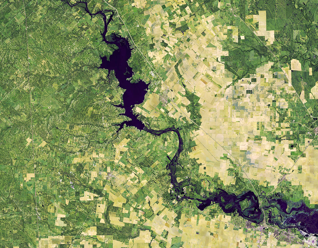 Landsat 8 false-color satellite image of flooding along the Nueces River