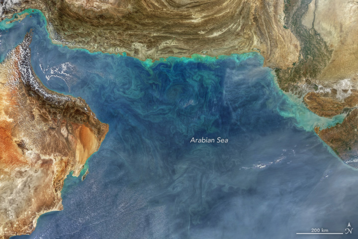 Aqua satellite image showing swirls of color in the Arabian Sea