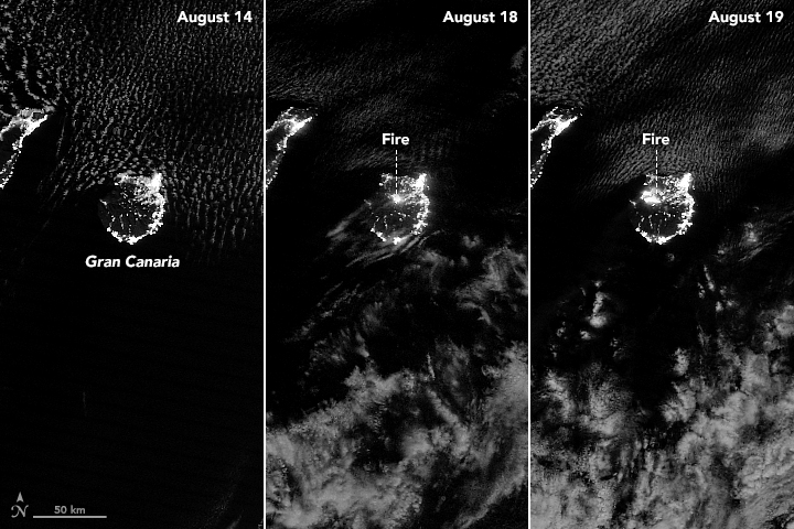 Suomi NPP satellite night images of growth of fire on Gran Canaria