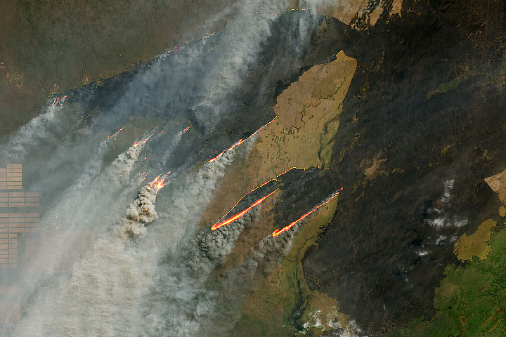 Landsat 8 satellite image of fire burning norht of the Paraguay River near Puerto Busch