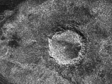 From Titan: the crater Sinlap, which is a relatively 'fresh' crater,