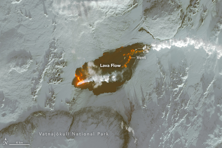 Landsat 8 image of lava pouring from Holuhraun in Iceland